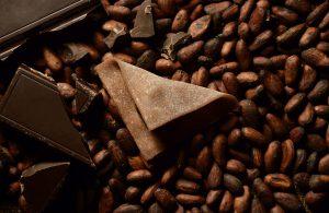 チョコレート味の八つ橋