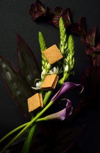 お花とビスケット