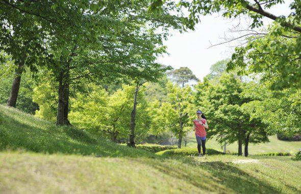新緑の季節のランニング