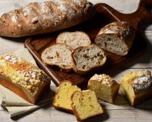 いろいろなパンの集合写真
